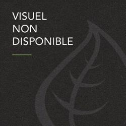 Image de La Chaouette Blanche 33CL (L)
